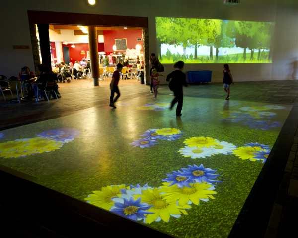 Interactive Forest Floor