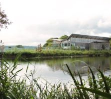 visitor centre business planning consultant