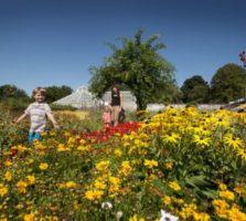 walled-garden-business-plan