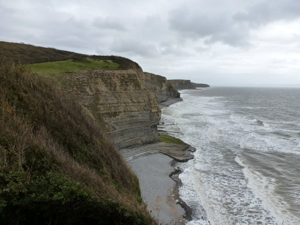 Coastal Feasbility Study
