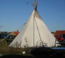 tipee business plan