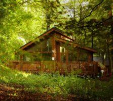 blackwood-forest-holidays-luxury-lodge