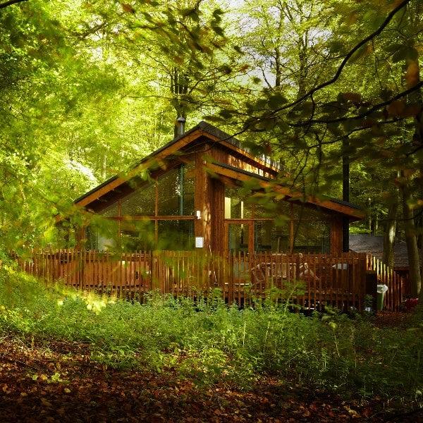 Site Assessment and Strategic Development Planning, Blackwood Forest, Hampshire