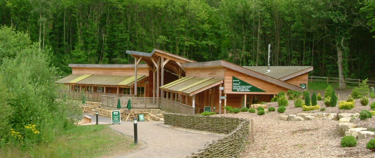 Visitor Centre and Forest Feasibility Study, Bedgebury National Pinetum, Kent