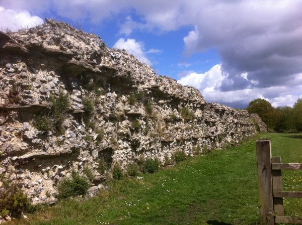 Silchester Roman Town, Visitor Experience Research