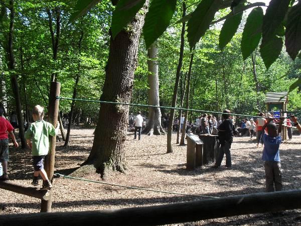 Visitor experience masterplan Black Park