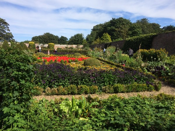 Walled garden options