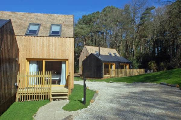Forest Lodge Feasibility Study, Dorset