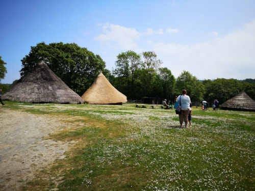 Heritage feasibility study