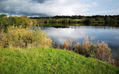 Park in the Past  Lake Feasibility Study
