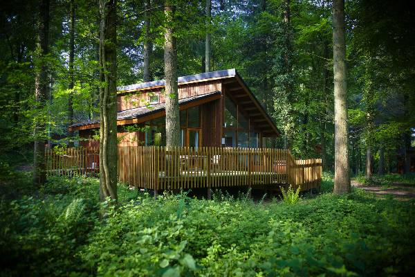 Forest Holidays Cabin Site Assessment