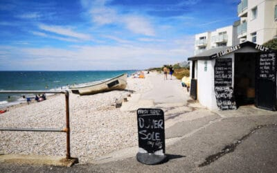 Bracklesham and East Wittering Vision, July 2020